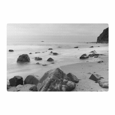 Nick Nareshni Water Moving Around Rocks Gray/Black/White Area Rug Rug Size: 4 x 6