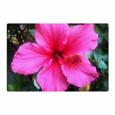 NL Designs Tropical Pink Hibiscus Floral Pink Area Rug Rug Size: 4 x 6