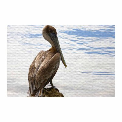 Philip Brown Pelican Waiting Blue Area Rug Rug Size: 4 x 6