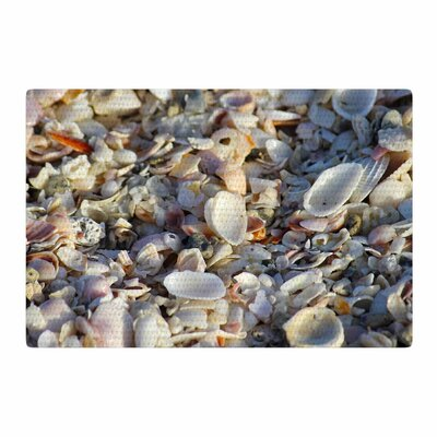 Philip Brown Seashells on the Beach Coral/Nature Area Rug Rug Size: 4 x 6