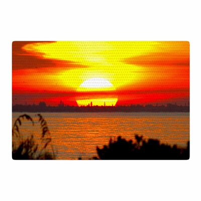 Philip Brown Sunrise on Sanibel Coral/Gold Area Rug Rug Size: 2 x 3