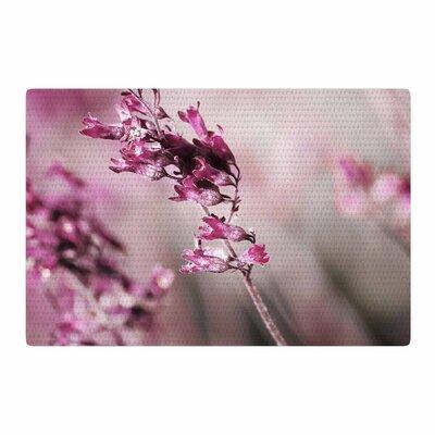 Pia Schneider Rose Spangles Pattern Pink/Black Area Rug Rug Size: 2 x 3