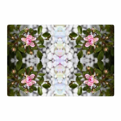 Pia Schneider Roses l Pink/Green Area Rug Rug Size: 4 x 6