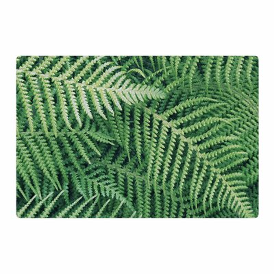 Richard Casillas	 Ferns Green/Black Area Rug Rug Size: 2 x 3