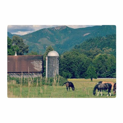 Robin Dickinson Country Life Green/Blue Area Rug Rug Size: 4 x 6