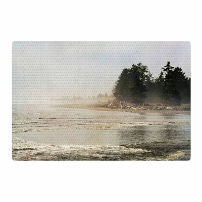 Robin Dickinson He Who Seeks Beauty Coastal Gray/White Area Rug Rug Size: 4 x 6