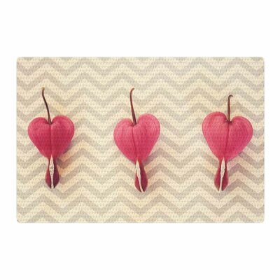 Robin Dickinson Heart with Chevrons Floral Pink Area Rug Rug Size: 4 x 6