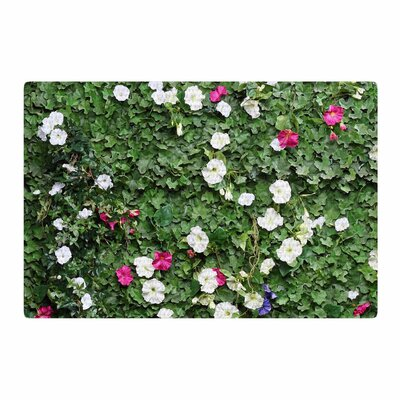 Susan Sanders Flower Vine Wall Magenta/Green Area Rug Rug Size: 4 x 6