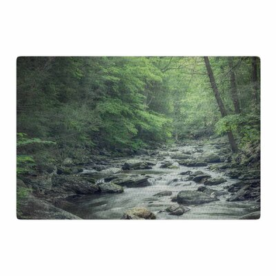 Suzanne Harford Misty Forest Stream Photography Green Area Rug Rug Size: 2 x 3