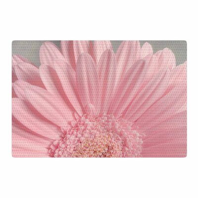 Suzanne Harford Summer Daisy Floral Pink Area Rug Rug Size: 2 x 3
