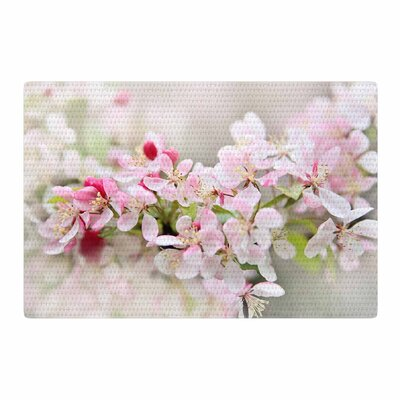 Sylvia Cook April Flowers Pink/White Area Rug Rug Size: 4 x 6