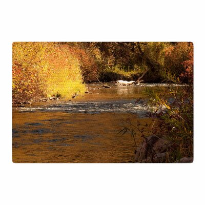 Sylvia Coomes Autumn Stream Brown/Yellow Area Rug Rug Size: 2 x 3