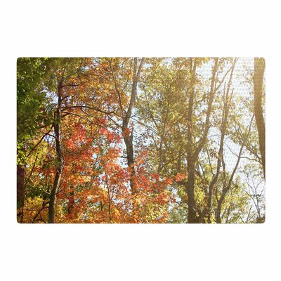 Sylvia Coomes Autumn Trees 1 Green/Orange Area Rug Rug Size: 2 x 3