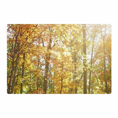 Sylvia Coomes Autumn Trees 2 Orange/Yellow Area Rug Rug Size: 4 x 6
