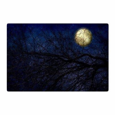 Sylvia Coomes Moon Celestial Blue Area Rug Rug Size: 4 x 6