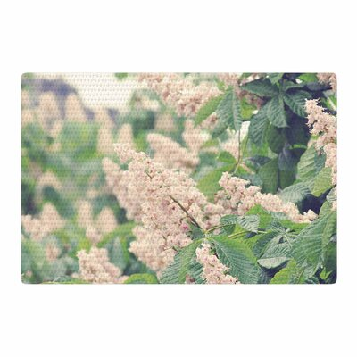 Sylvia Coomes Breath of Fresh Air Floral Pink Area Rug Rug Size: 2 x 3