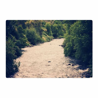Sylvia Coomes Cold Stream Photography Green Area Rug Rug Size: 2 x 3