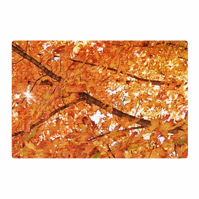 Sylvia Coomes Fall Folioge Orange/Yellow Area Rug Rug Size: 4 x 6