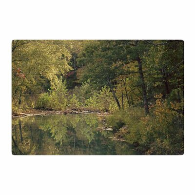 Sylvia Coomes in The Woods 3 Photography Brown Area Rug Rug Size: 4 x 6