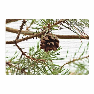 Sylvia Coomes Pinecone Green/Brown Area Rug Rug Size: 2 x 3