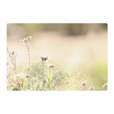 Sylvia Coomes Shimmering Light Photography Nature Area Rug Rug Size: 2 x 3