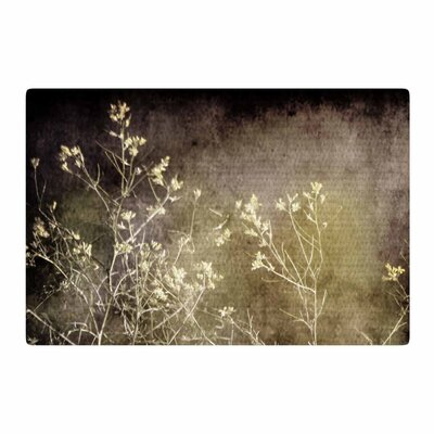 Sylvia Coomes Wild Darkness Photography Black Area Rug Rug Size: 2 x 3