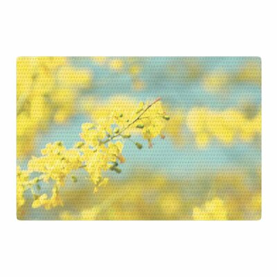 Sylvia Coomes Blooms 2 Blue/Yellow Area Rug Rug Size: 2 x 3