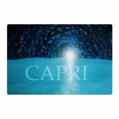 Theresa Giolzetti the Grotto of Capri Black/Blue Area Rug Rug Size: 2 x 3