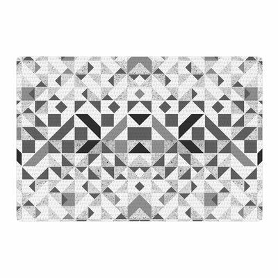 Vasare Nar Monochrome Geometric Gray Area Rug Rug Size: 4 x 6