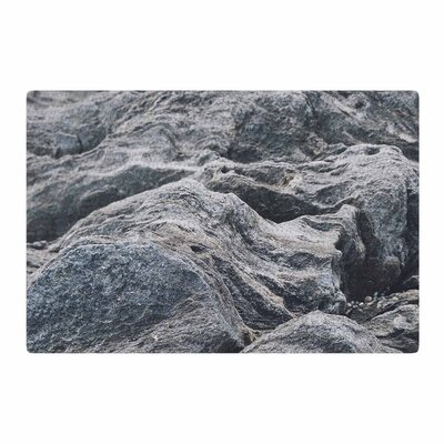 Will Wild Stone Landscape Gray/Nature Area Rug Rug Size: 4 x 6