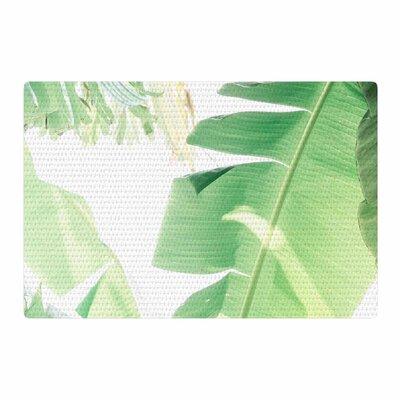 Ann Barnes Banana Leaf I Green/White Area Rug Rug Size: 4 x 6