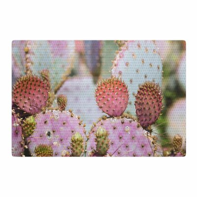 Ann Barnes Cotton Candy Cacti Pink/Purple Area Rug Rug Size: 2 x 3