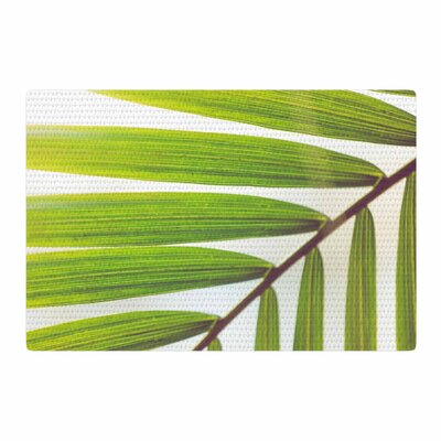 Ann Barnes Jungle Abstract Green/White Area Rug Rug Size: 4 x 6