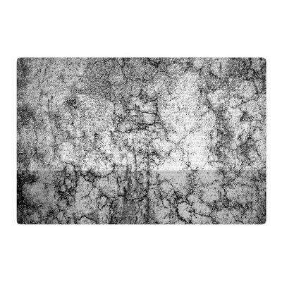 Ann Barnes Marble I Gray/Black Area Rug Rug Size: 4 x 6