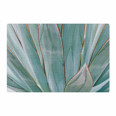 Ann Barnes Agave Abstract Photography Green/Red Area Rug Rug Size: 2 x 3