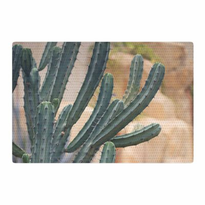 Ann Barnes Cactus Jungle II Photography Green/Beige Area Rug Rug Size: 4 x 6