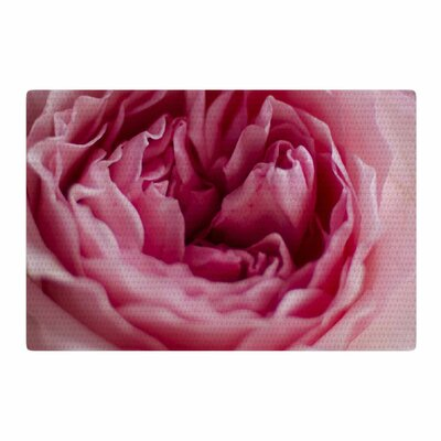 Cristina Mitchell A Single Rose Floral Photography Pink/Pastel Area Rug Rug Size: 4 x 6