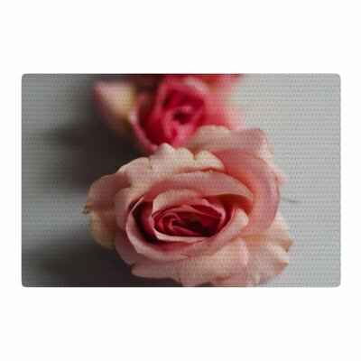 Cristina Mitchell Row of Roses Floral Photography Pink/Blue Area Rug Rug Size: 2 x 3