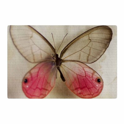 Cristina Mitchell Butterfly Floral Photography Beige/Pink Area Rug Rug Size: 2 x 3