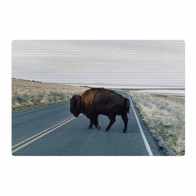 Chelsea Victoria Buffalo Crossing Animals Photography Brown/Blue Area Rug Rug Size: 4 x 6