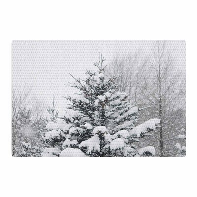 Chelsea Victoria Cool Yule Photography White/Green Area Rug Rug Size: 4 x 6