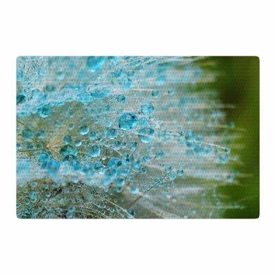 Ginkelmier Blue Rain Dandelion Green Photography Area Rug Rug Size: 4 x 6