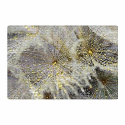 Ginkelmier Golden Dew On Dandelio White/Yellow Area Rug Rug Size: 4 x 6