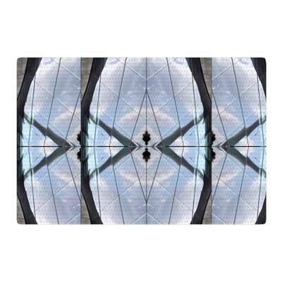 Tiny September Butterfly Glass Photography Blue/Black Area Rug Rug Size: 2 x 3