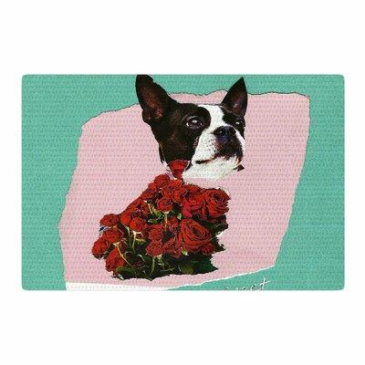 Jina Ninjjaga Bully Olive Photography Pink Area Rug Rug Size: 2 x 3