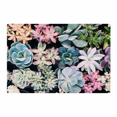 Kristi Jackson Succulent Gatherin Photography Black/Green Pastel Area Rug Rug Size: 4 x 6