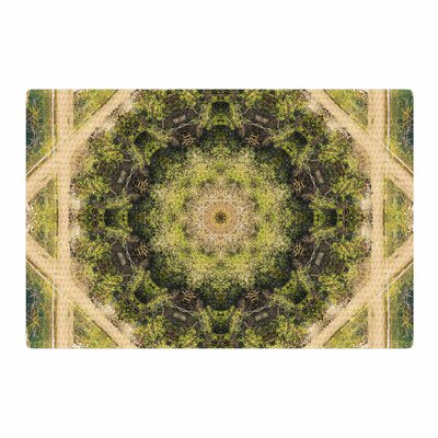 Nick Nareshni Forest Green Mandala Geometric Green/Teal Area Rug Rug Size: 2' x 3'