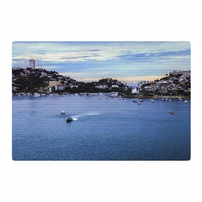 Nick Nareshni Puerto Rico Coastline Blue/Black Area Rug Rug Size: 4 x 6