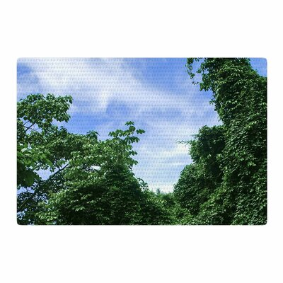 Nick Nareshni Forest In The Sky Black/Green Area Rug Rug Size: 2 x 3