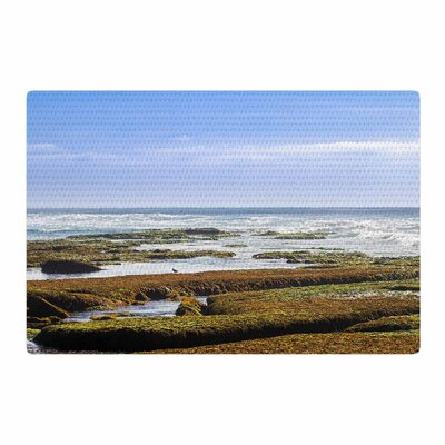 Nick Nareshni Low Tide Reef Blue/Orange Area Rug Rug Size: 2 x 3